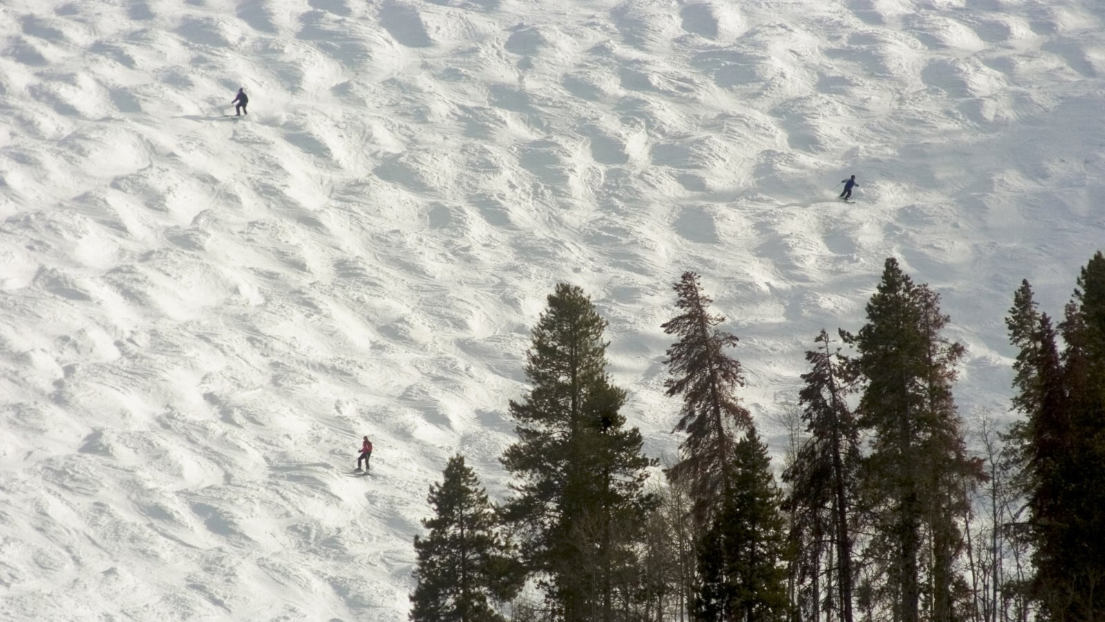 Vail Ski Resort mostrando esqui na neve e neve