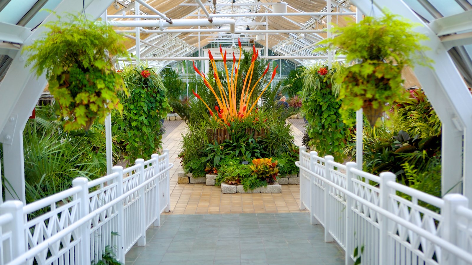 Franklin Park Conservatory And Botanical Gardens Showing A Garden, Flowers  And Interior Views