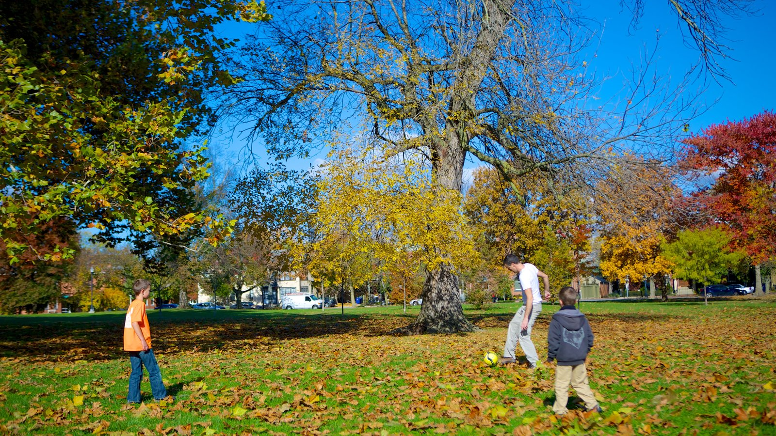 Schiller Park showing a park and autumn leaves as well as a family