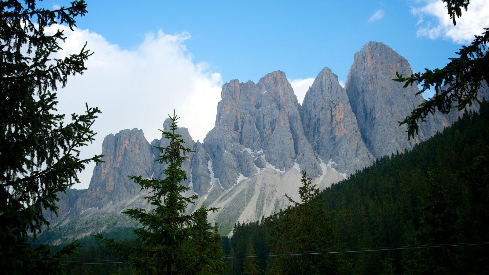 Funes mostrando florestas e montanhas