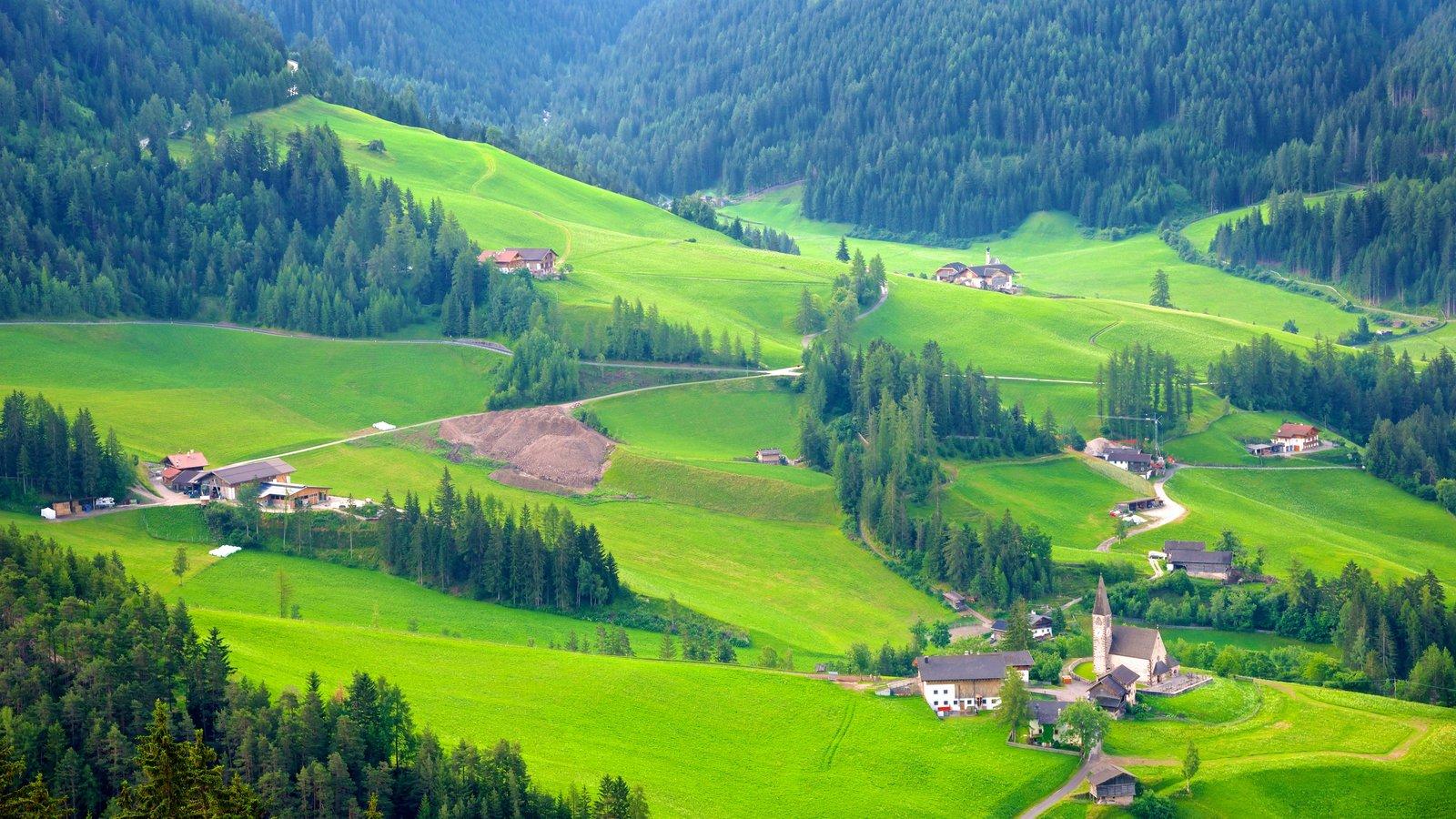 Funes mostrando paisagem, fazenda e cenas tranquilas