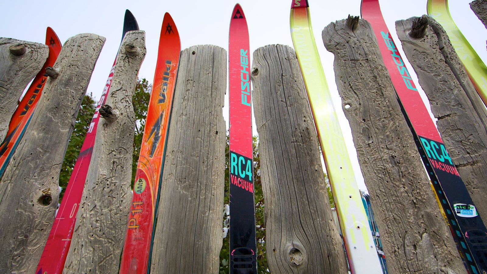 Jackson Hole mostrando esquiar en la nieve