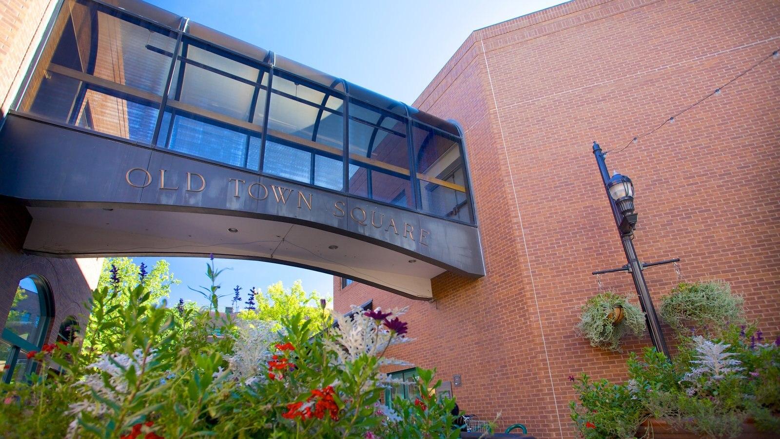 Fort Collins que inclui um jardim, sinalização e uma ponte