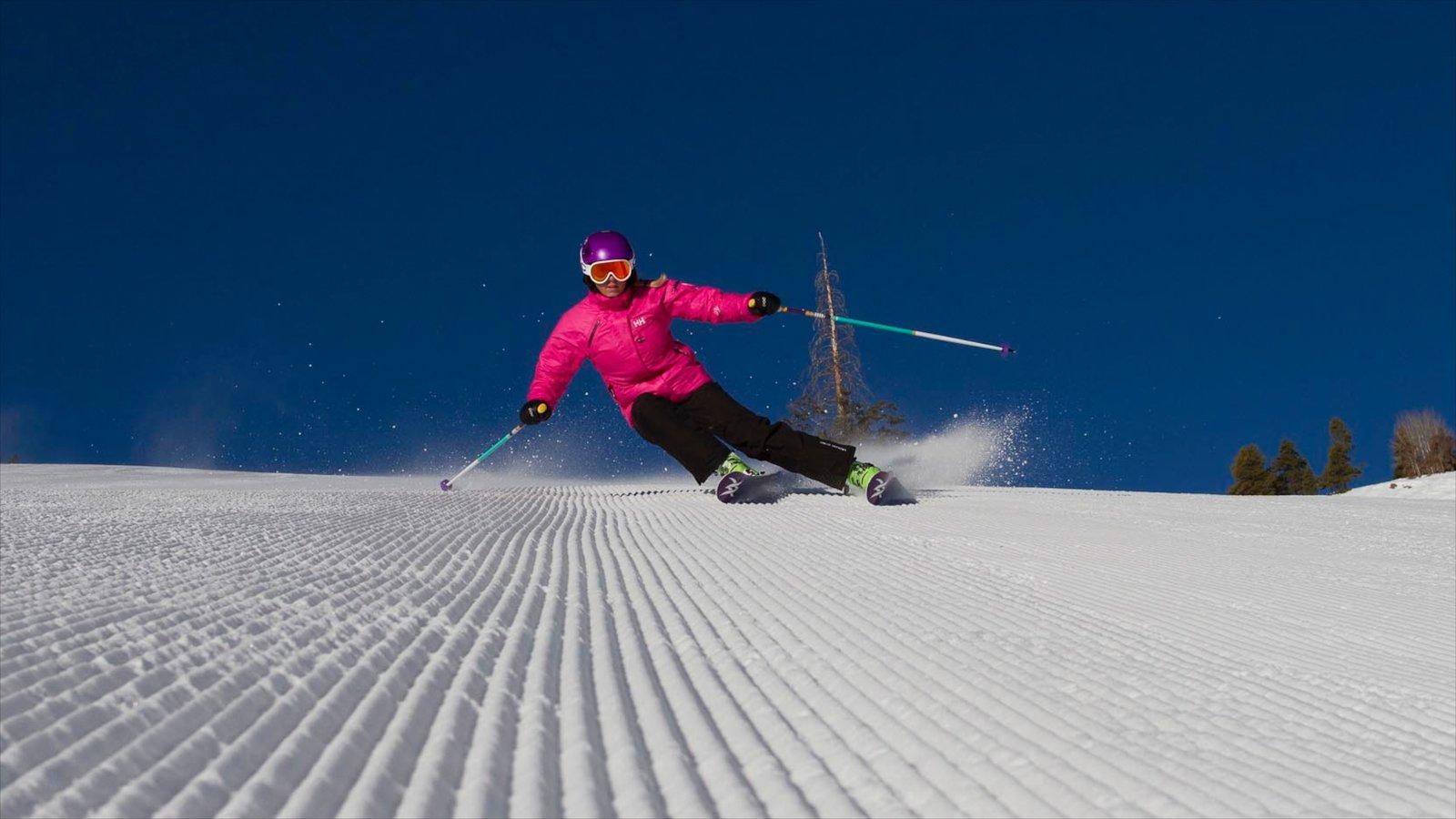Vail - Beaver Creek caracterizando neve e esqui na neve assim como uma mulher sozinha