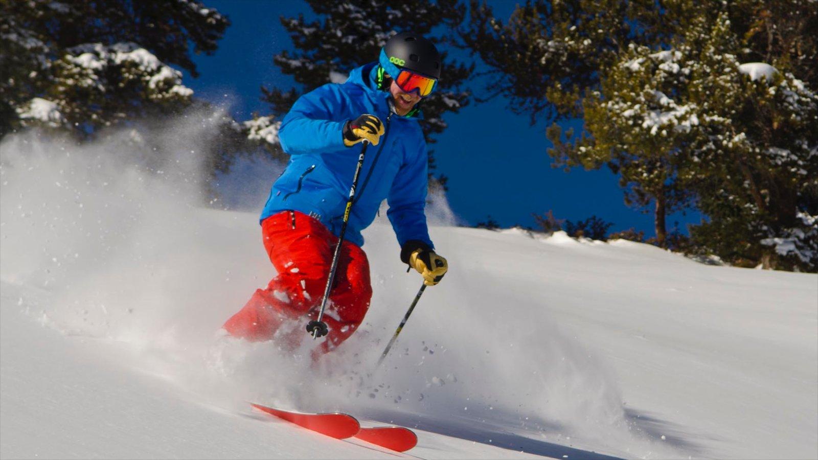 Vail - Beaver Creek mostrando esqui na neve e neve assim como um homem sozinho