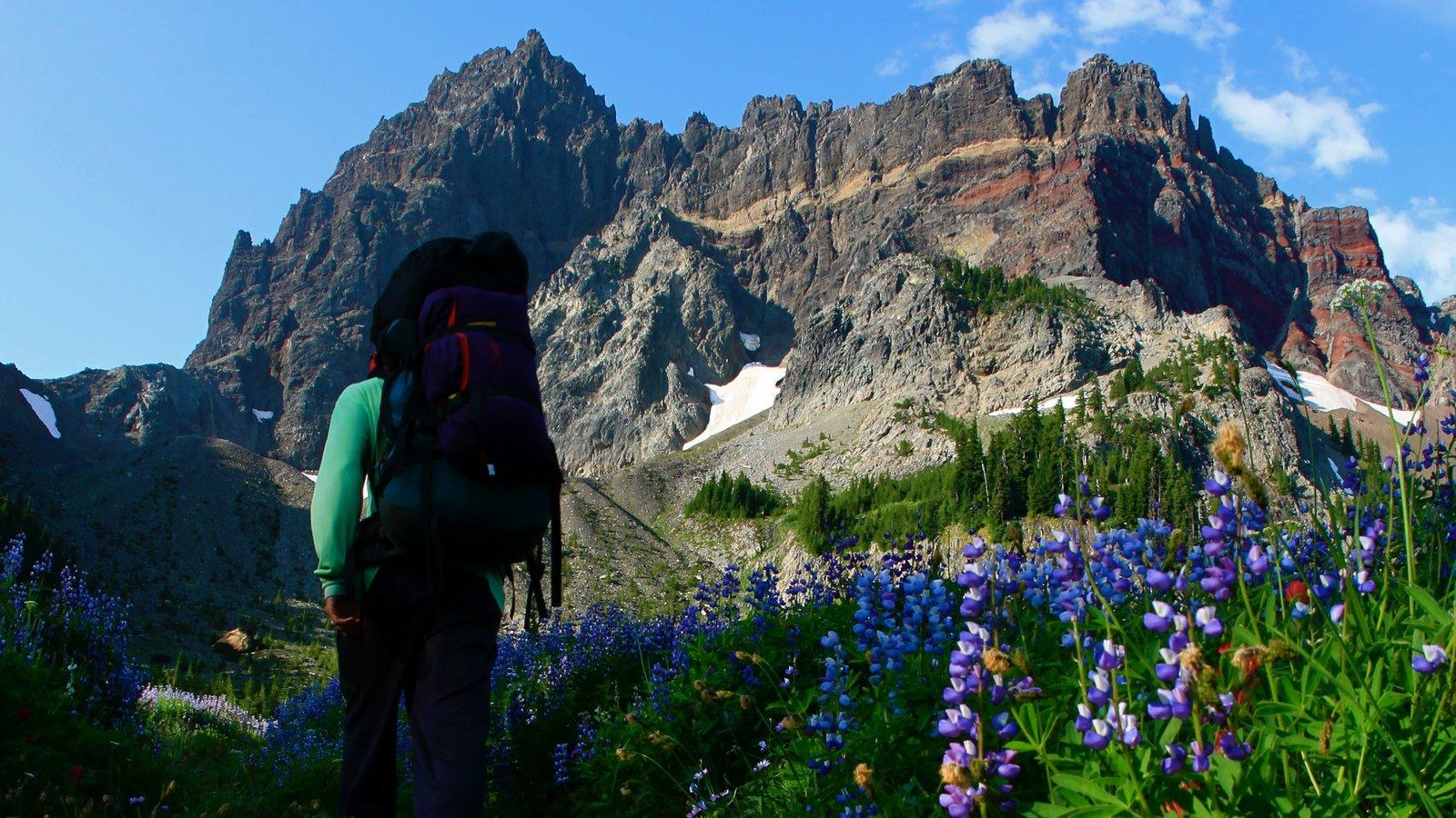 Bend que incluye senderismo o caminata, montañas y flores silvestres