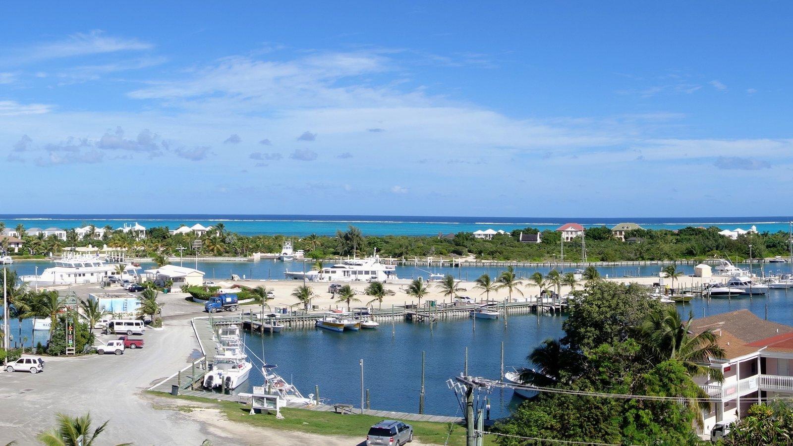 Turtle Cove featuring a marina and a coastal town
