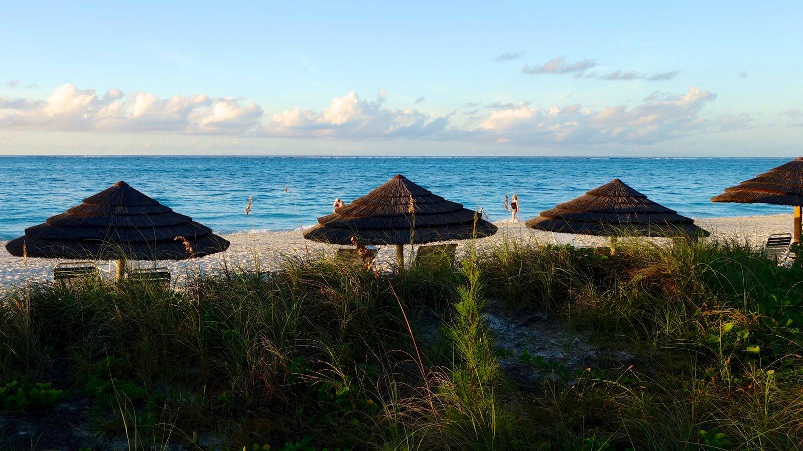 Grace Bay Beach which includes a sandy beach