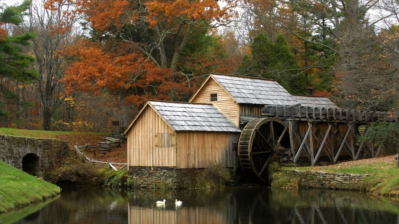 Virginia featuring tranquil scenes and a river or creek