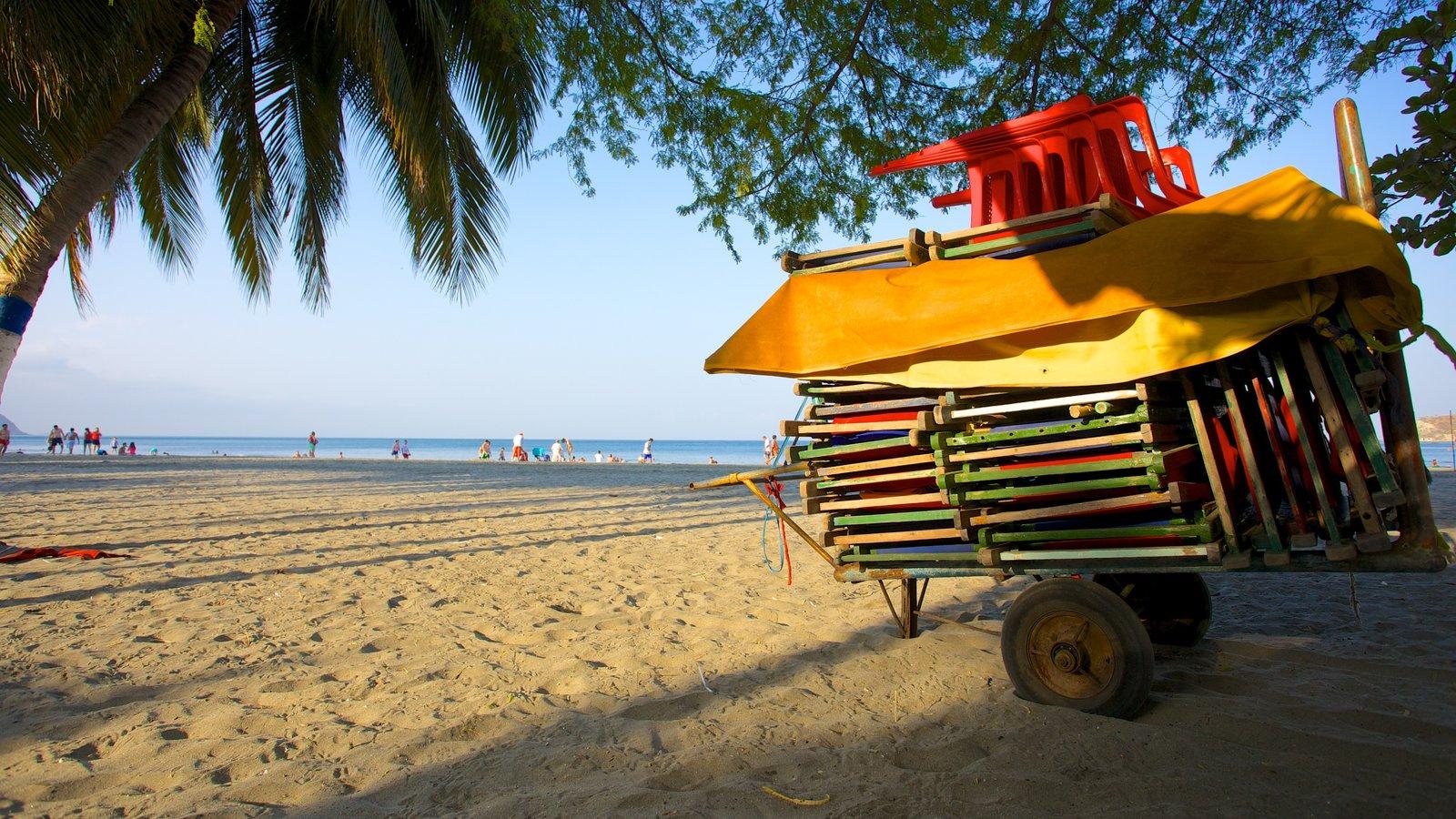 Praia Rodadero que inclui uma praia de areia e cenas tropicais