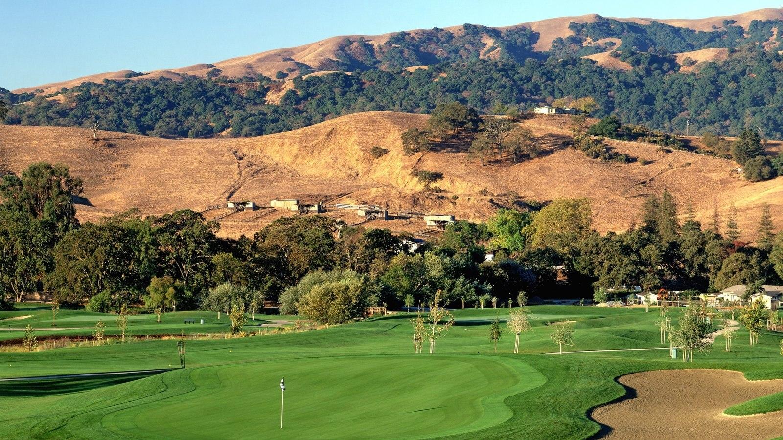 Pleasanton mostrando paisagem e golfe