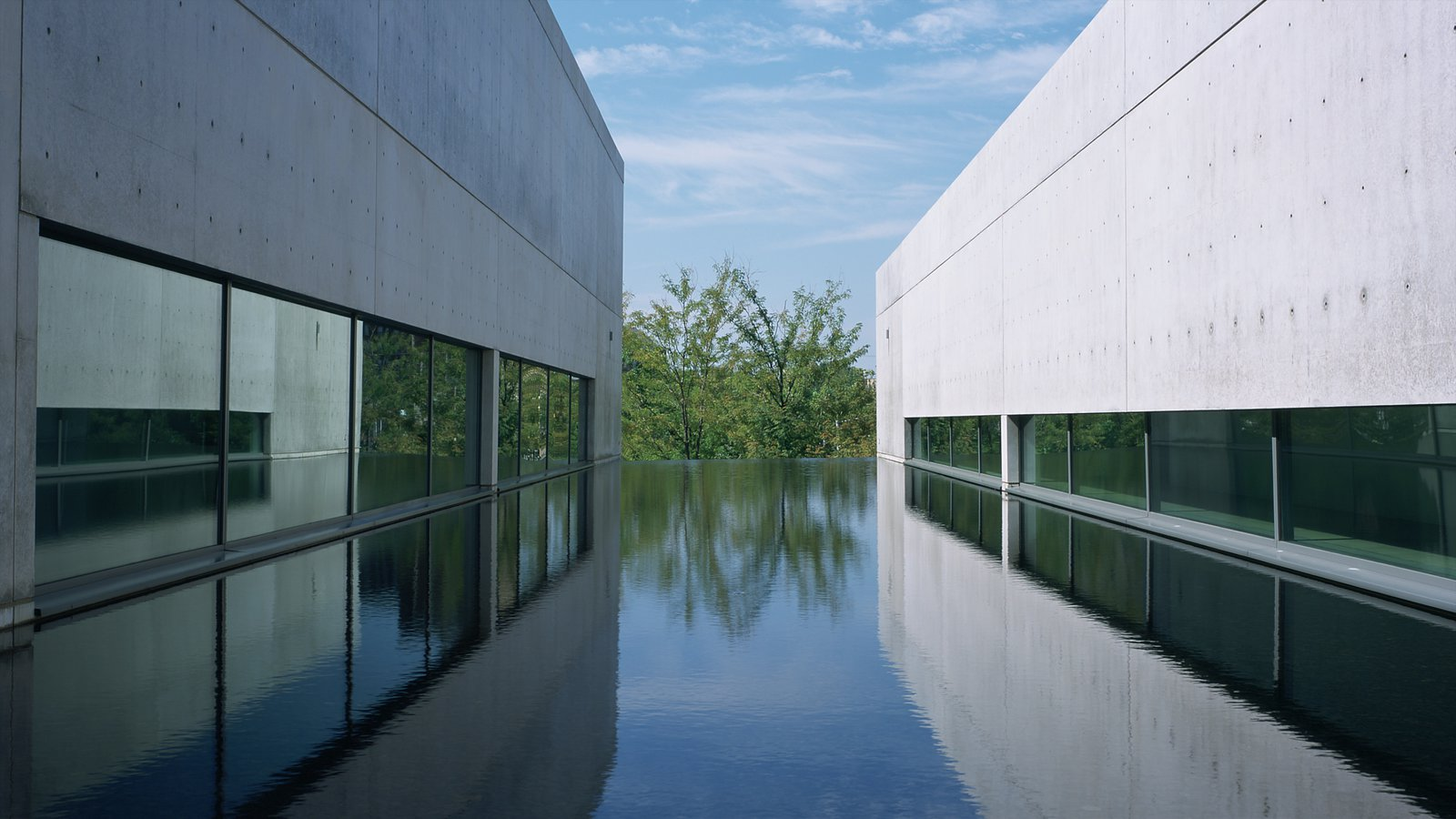 Pulitzer Foundation for the Arts que inclui arquitetura moderna e uma piscina