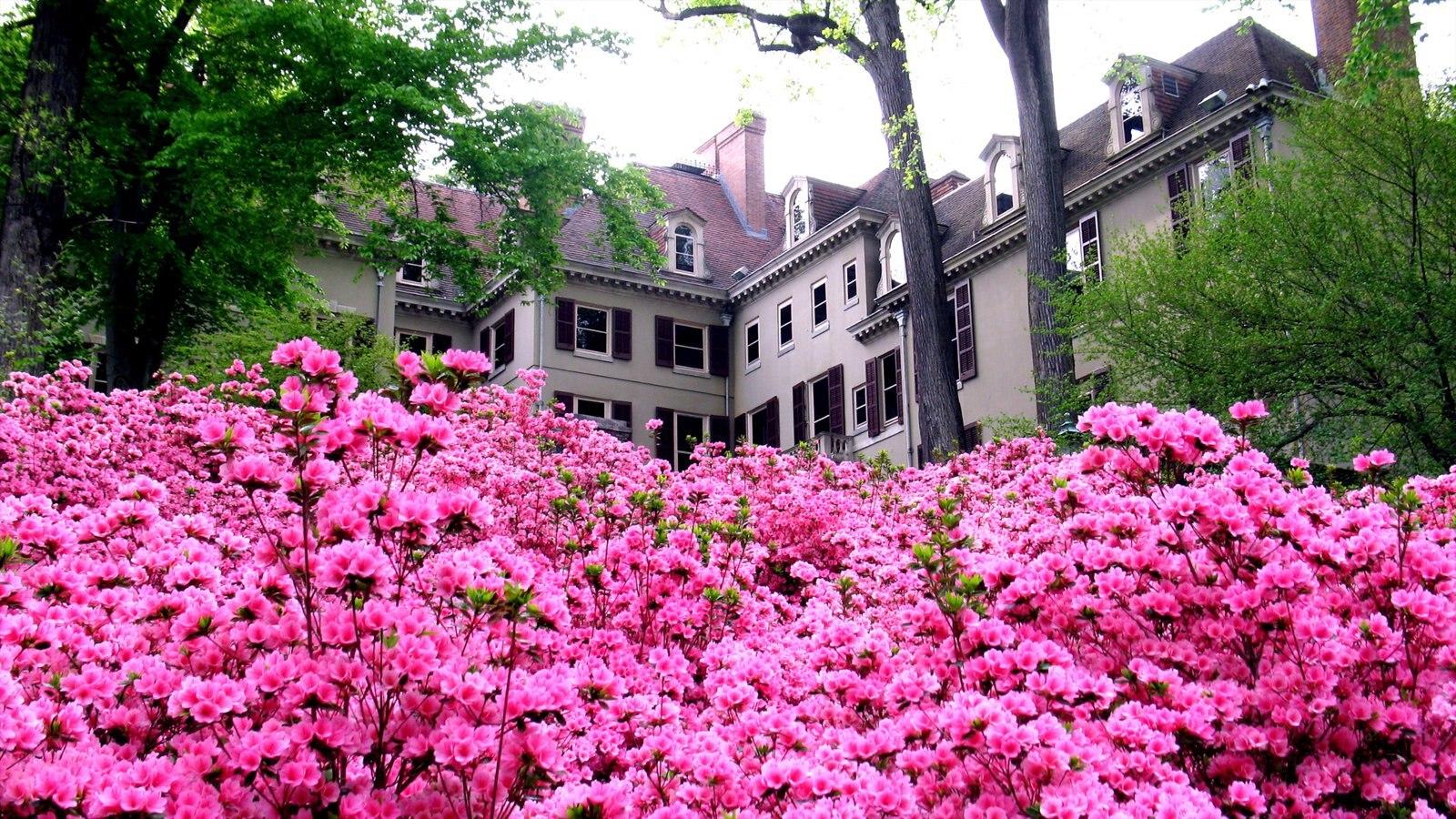 Wilmington ofreciendo elementos del patrimonio, flores y un jardín