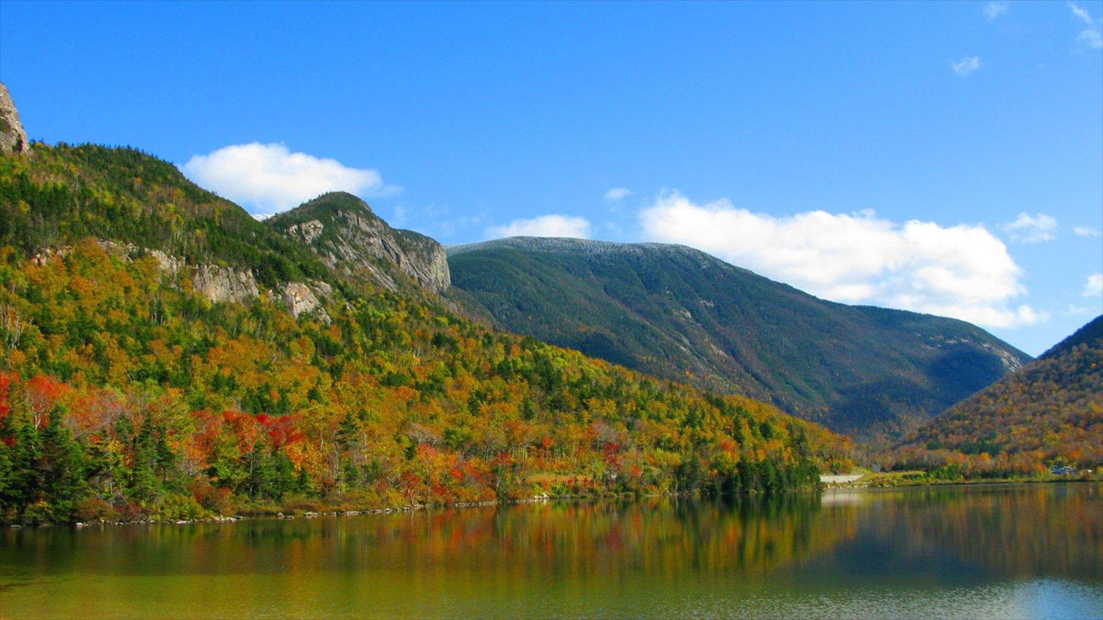 White Mountains mostrando un lago o abrevadero, escenas tranquilas y hojas de otoño