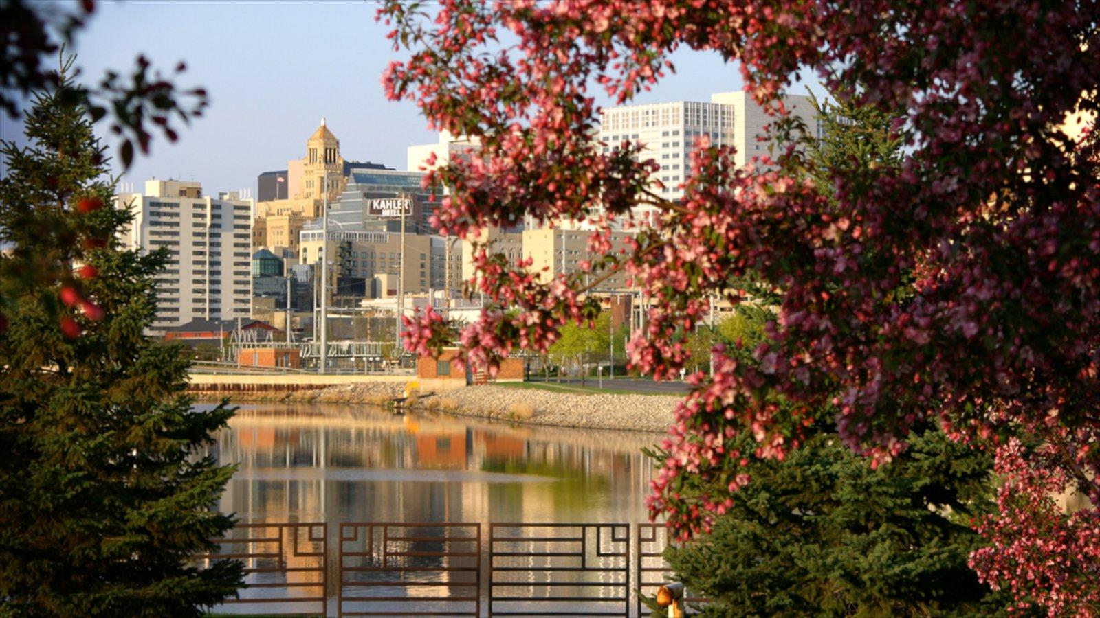 Rochester mostrando uma cidade litorânea, paisagens litorâneas e um parque