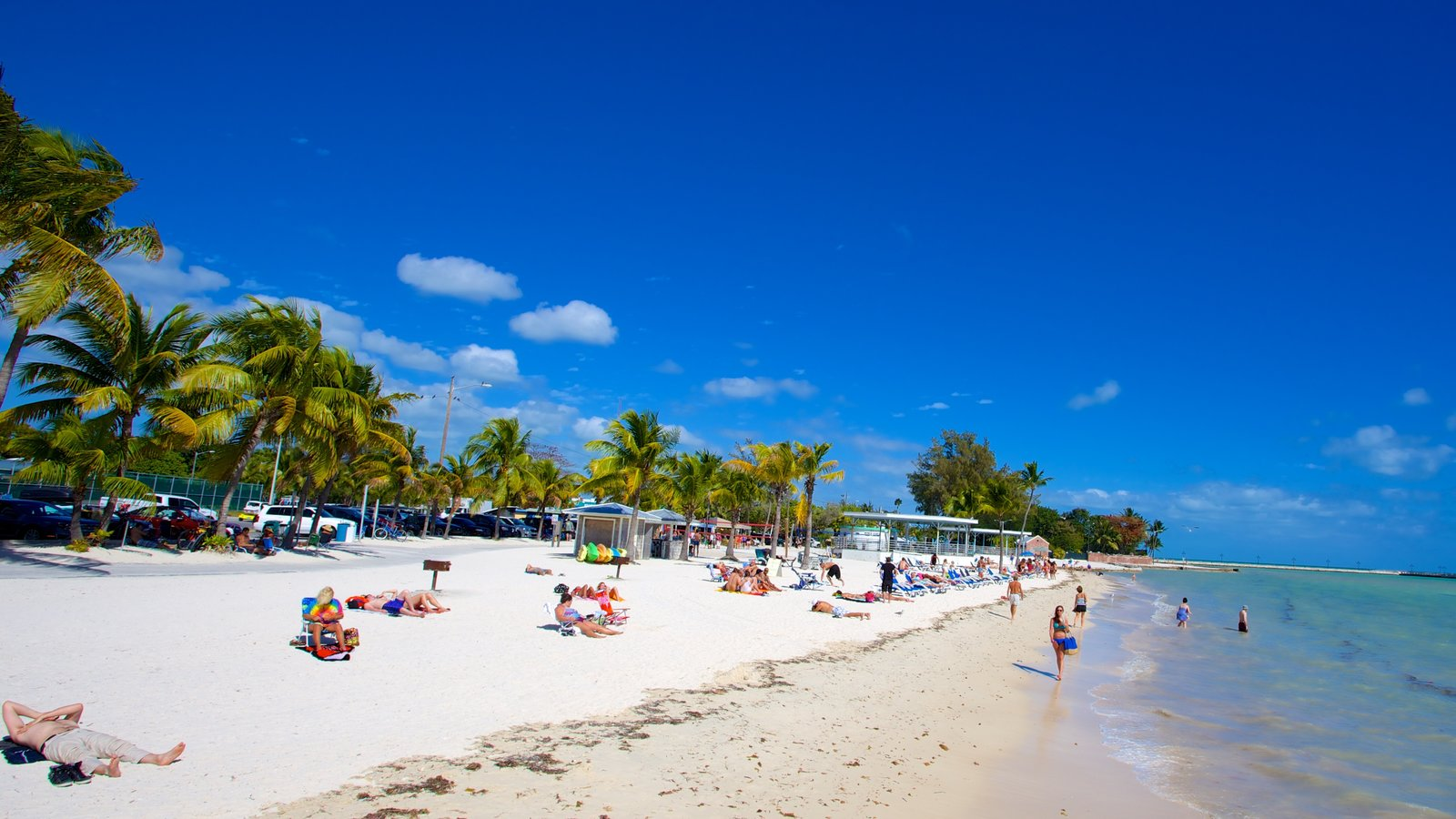 Higgs Beach which includes tropical scenes and a sandy beach as well as a large group of people