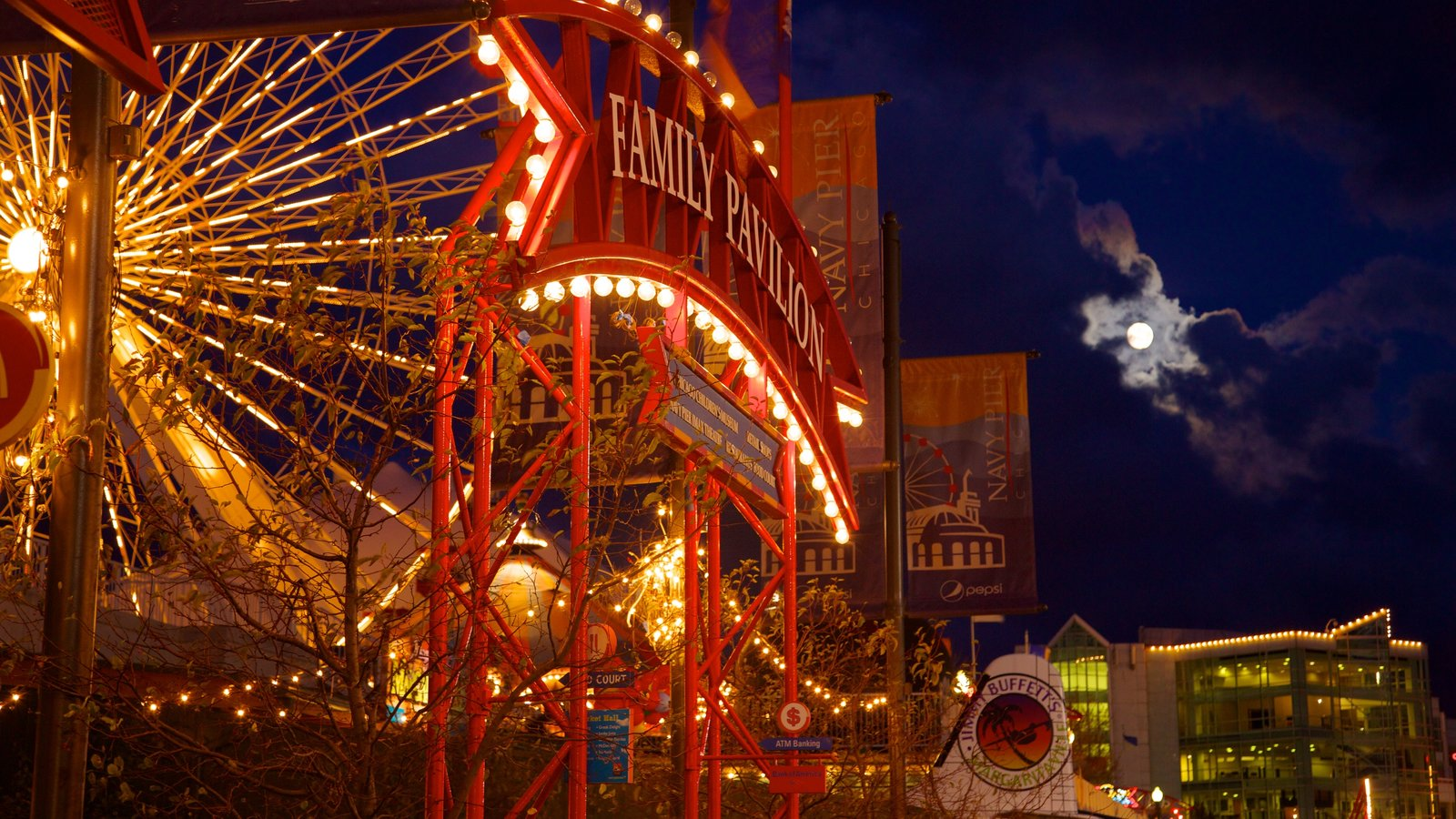 Navy Pier featuring rides, night scenes and signage