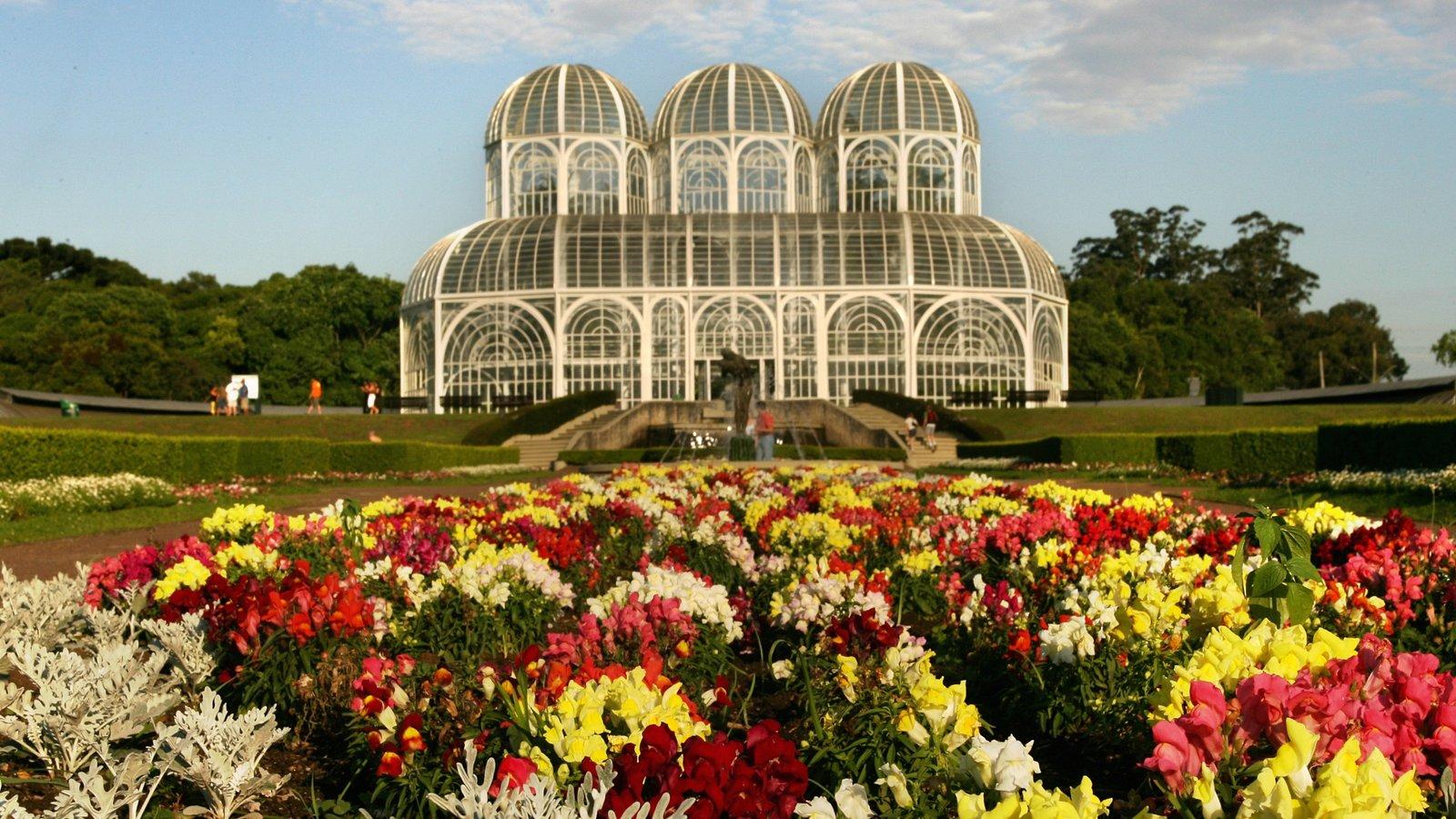 Curitiba caracterizando arquitetura de patrimônio, um jardim e flores