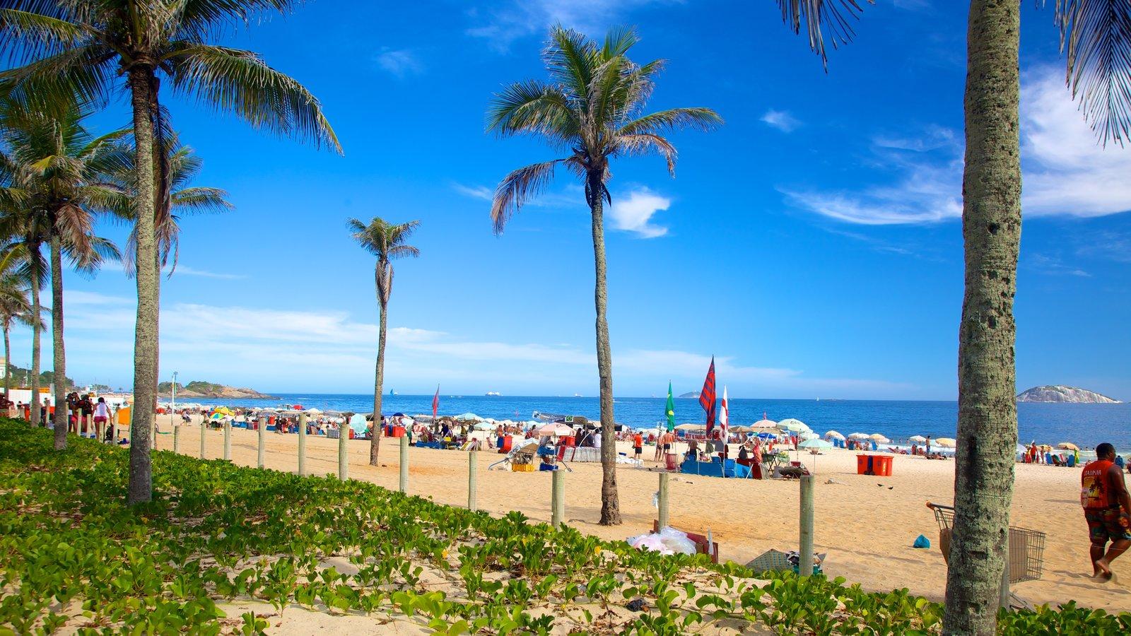 Praia de Ipanema que inclui cenas tropicais e uma praia