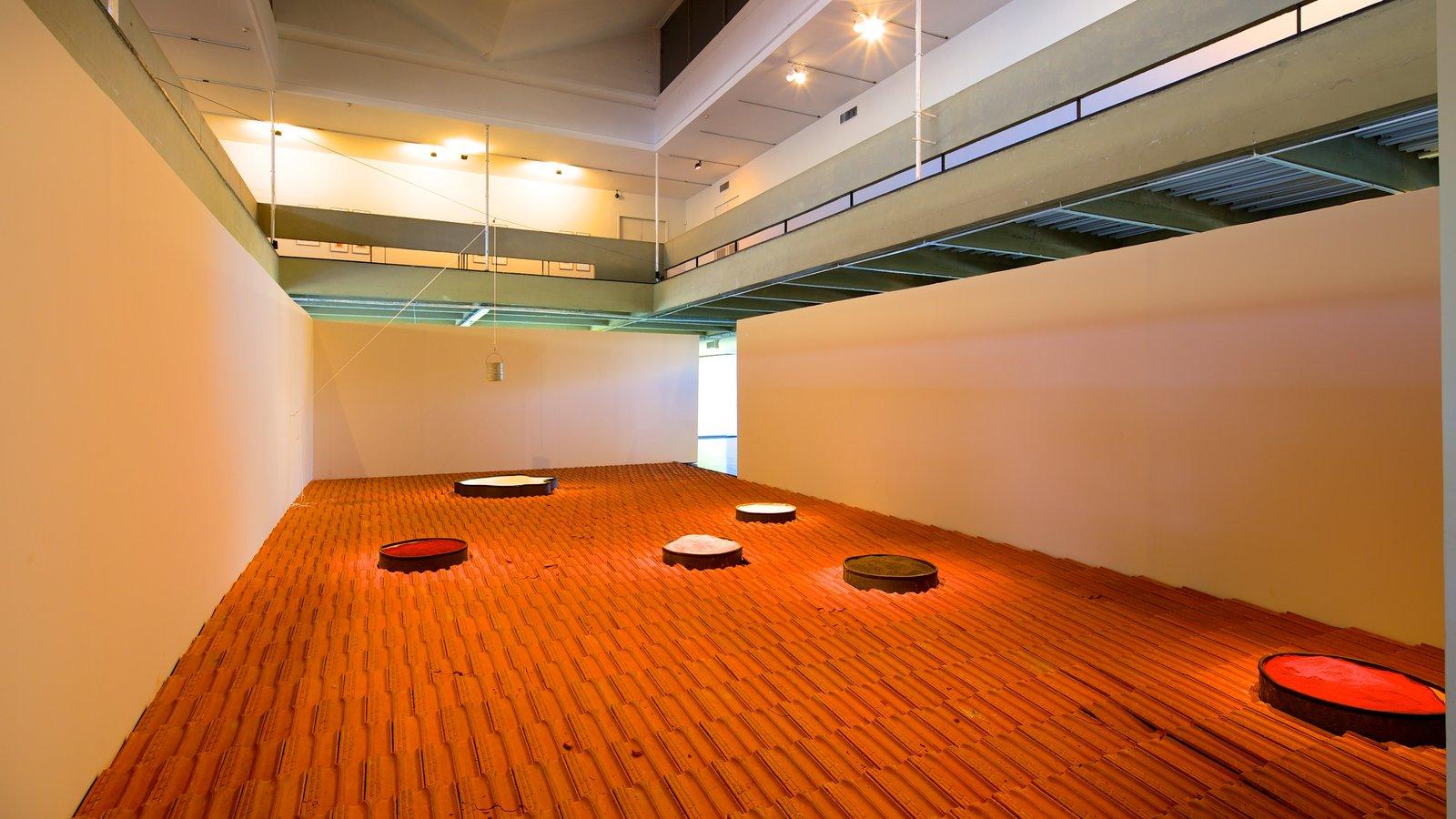 Museu de Arte Moderna mostrando arte e vistas internas