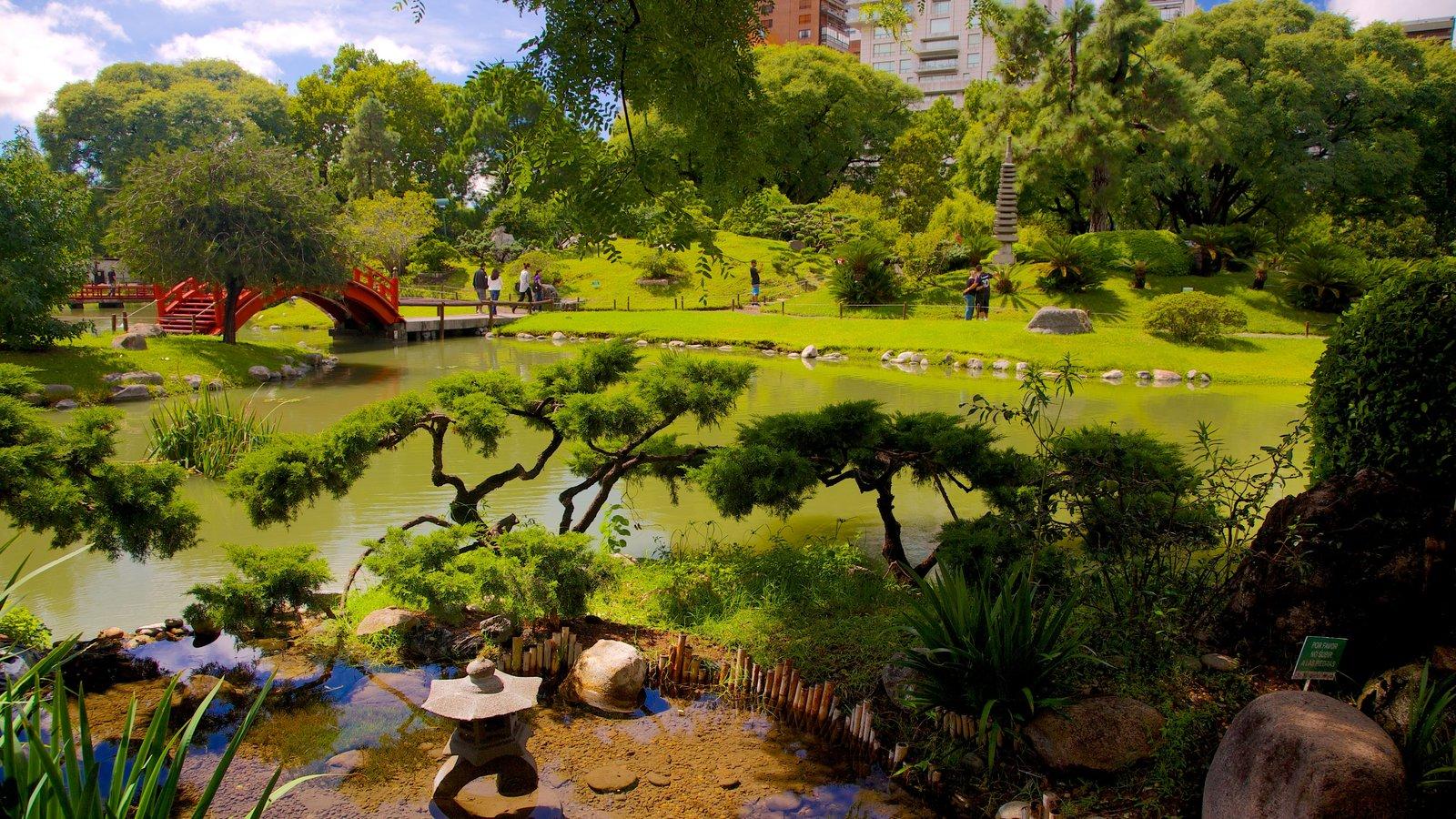 jardn japons que incluye un estanque y un jardn