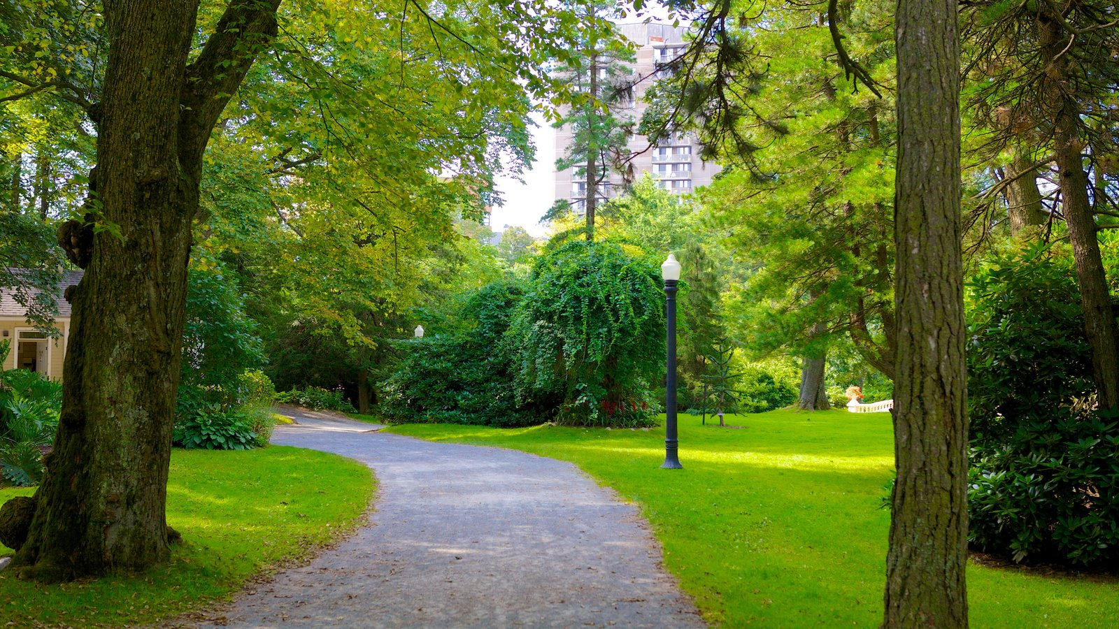 Jardines públicos Halifax que incluye un jardín