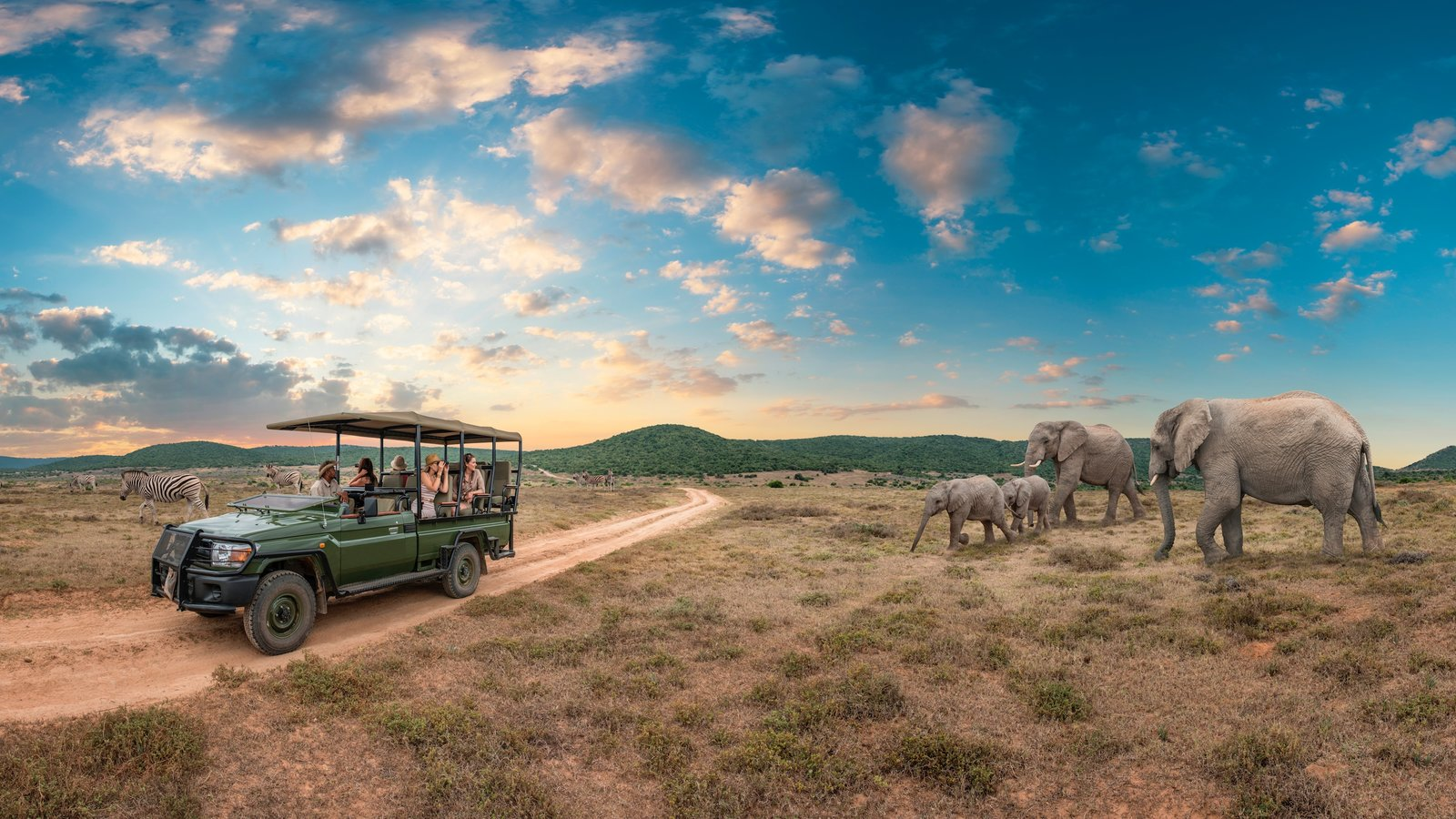Johannesburg - Gauteng which includes touring, land animals and tranquil scenes