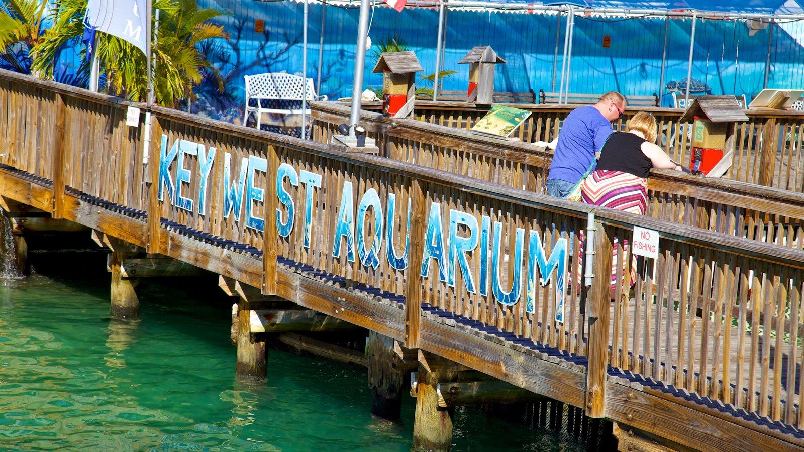 Key West Aquarium Pictures View Photos Images Of Key West Aquarium