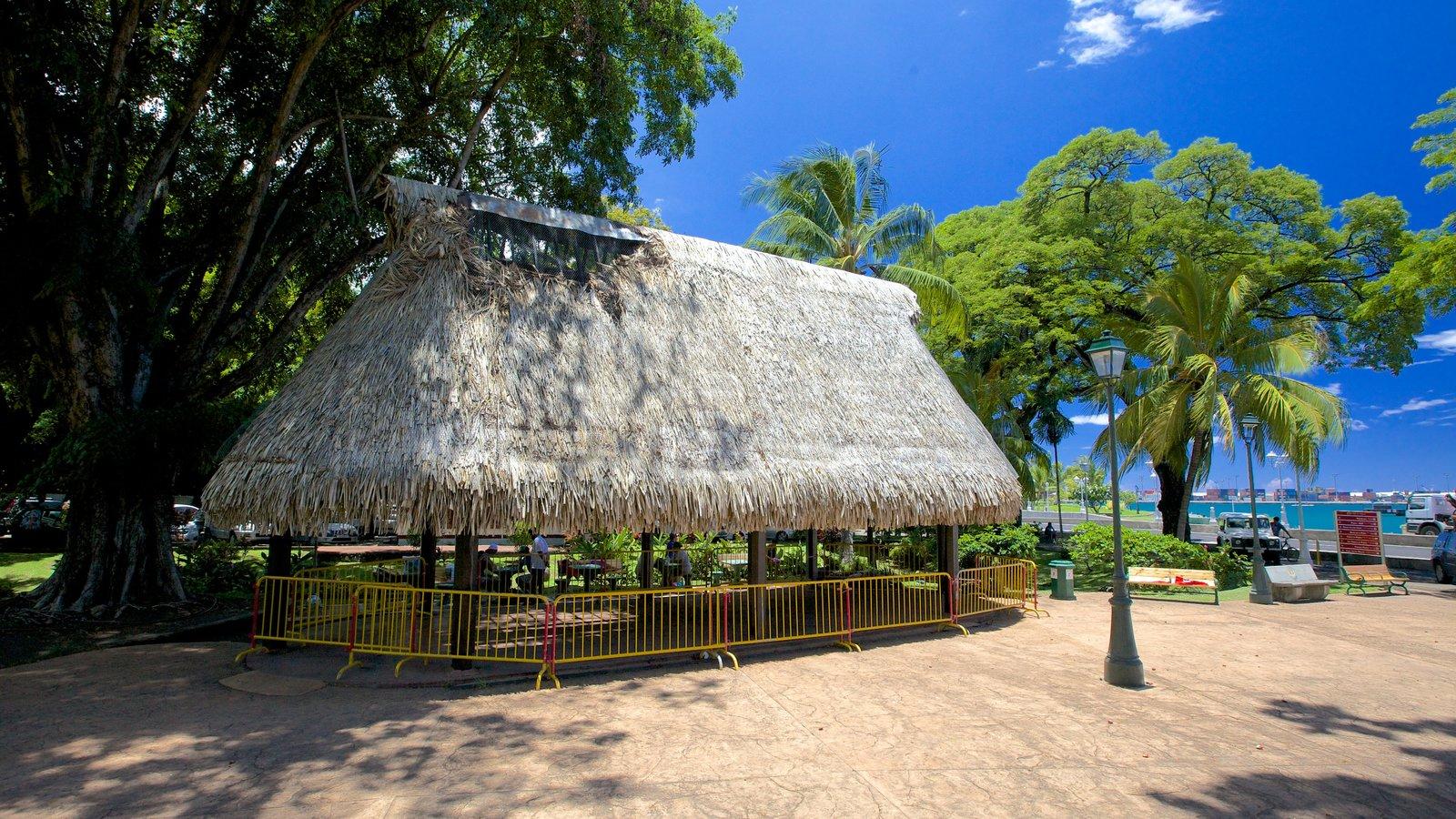 Parc Bougainville que incluye escenas tropicales