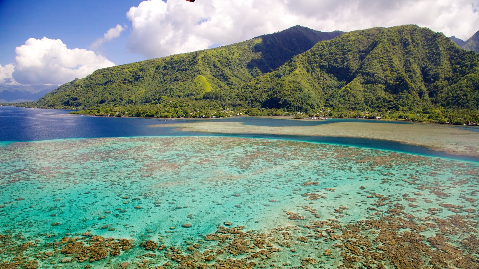 Tahiti which includes colorful reefs, general coastal views and mountains