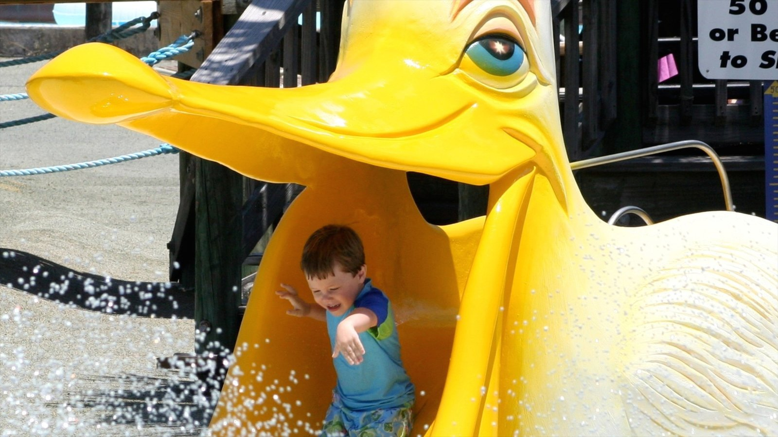 Shipwreck Island Waterpark caracterizando um parque aquático assim como uma criança sozinha
