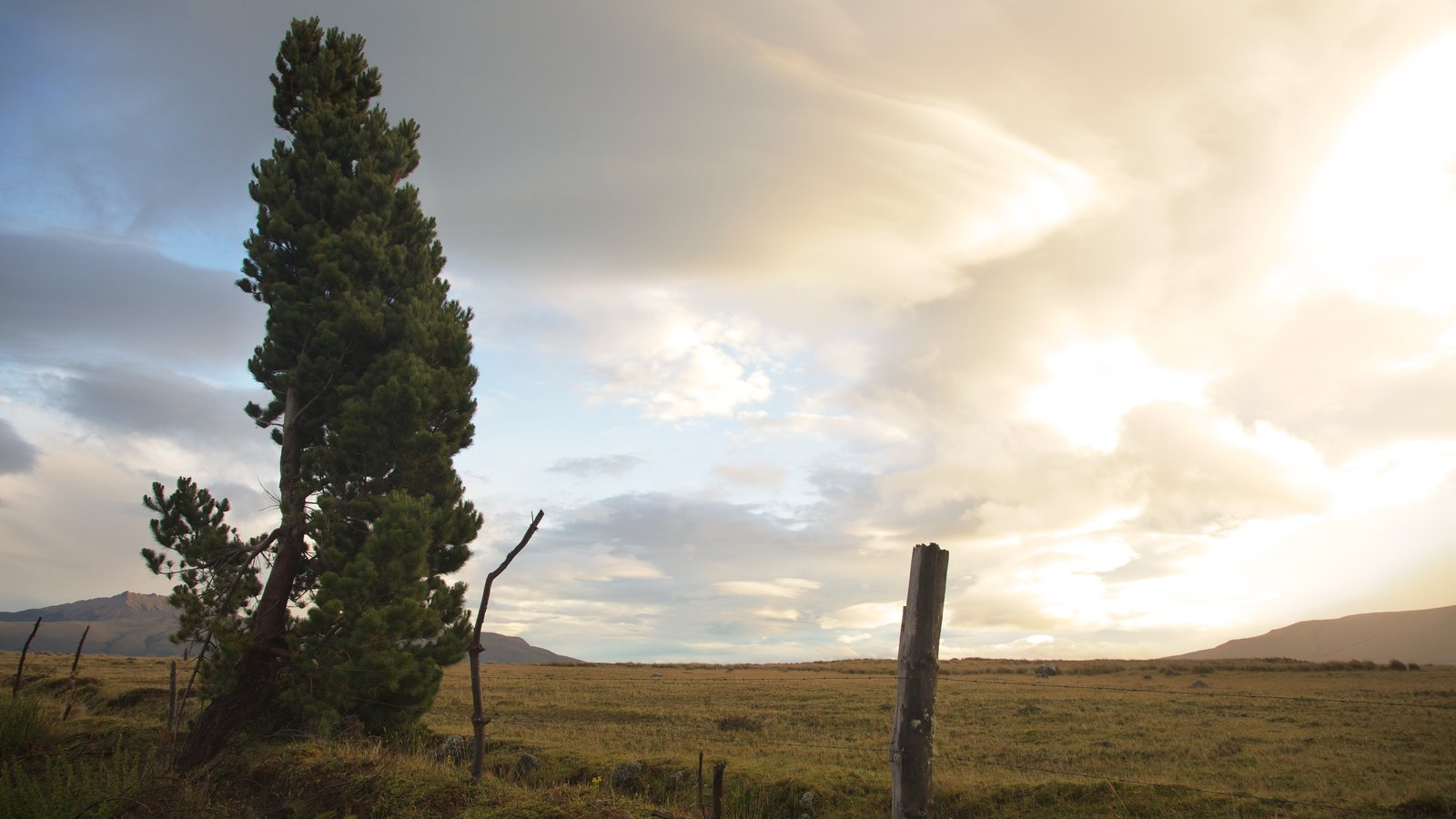 Parque Nacional Cotopaxi que inclui cenas tranquilas