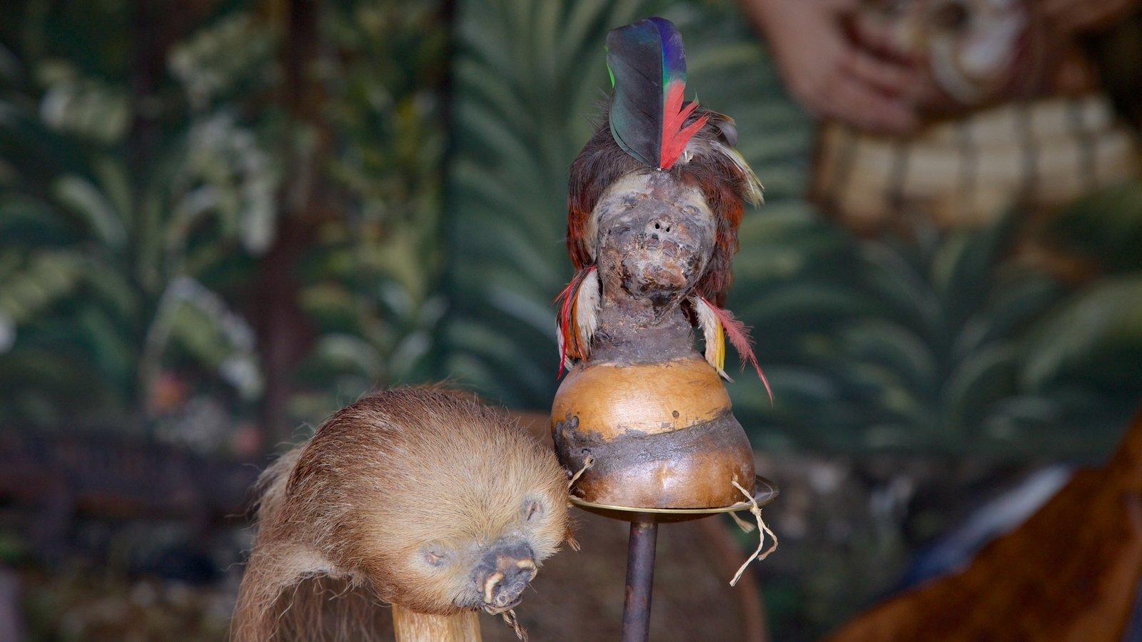 Museo Solar Intiñan que inclui vistas internas e cultura nativa