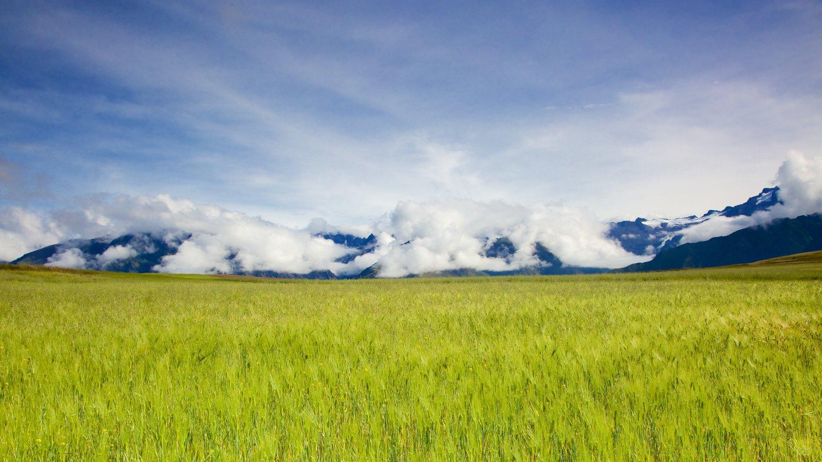 Cuzco mostrando paisagem e cenas tranquilas