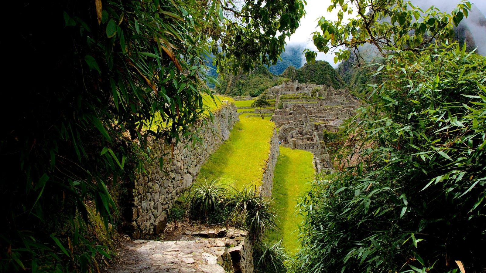 Machu Picchu que inclui uma ruína