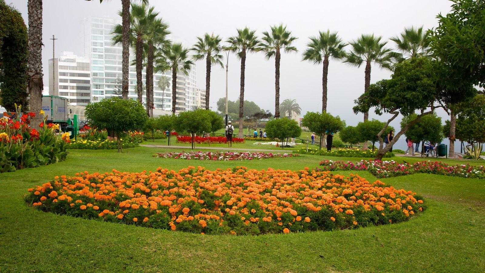 Fotos de flores ver im genes de parque del amor for Plantas ornamentales para parques