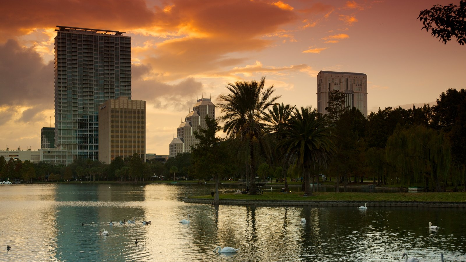 Lake Eola Park featuring a city, a sunset and a lake or waterhole