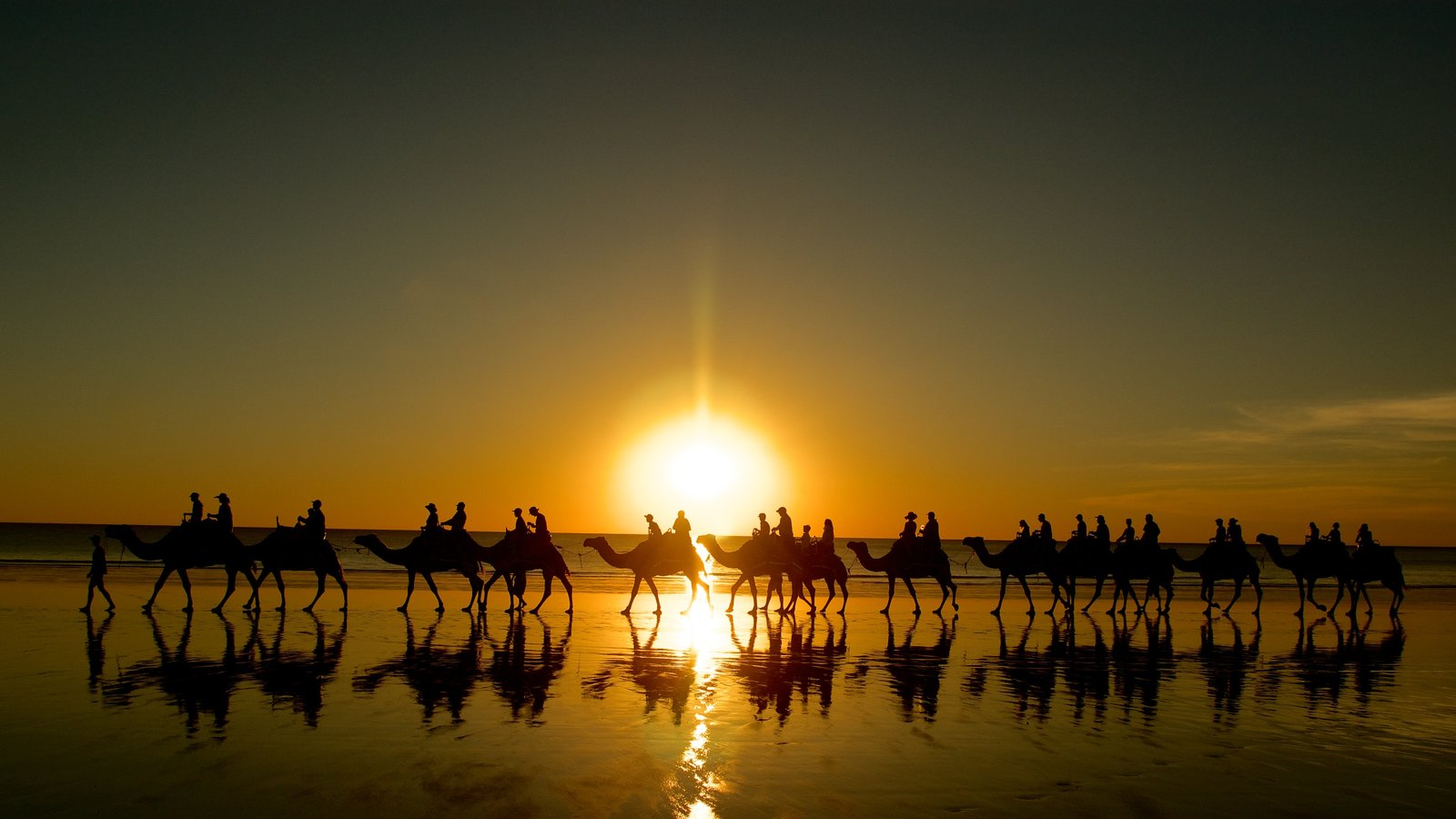 Cable Beach featuring a sandy beach, land animals and a sunset