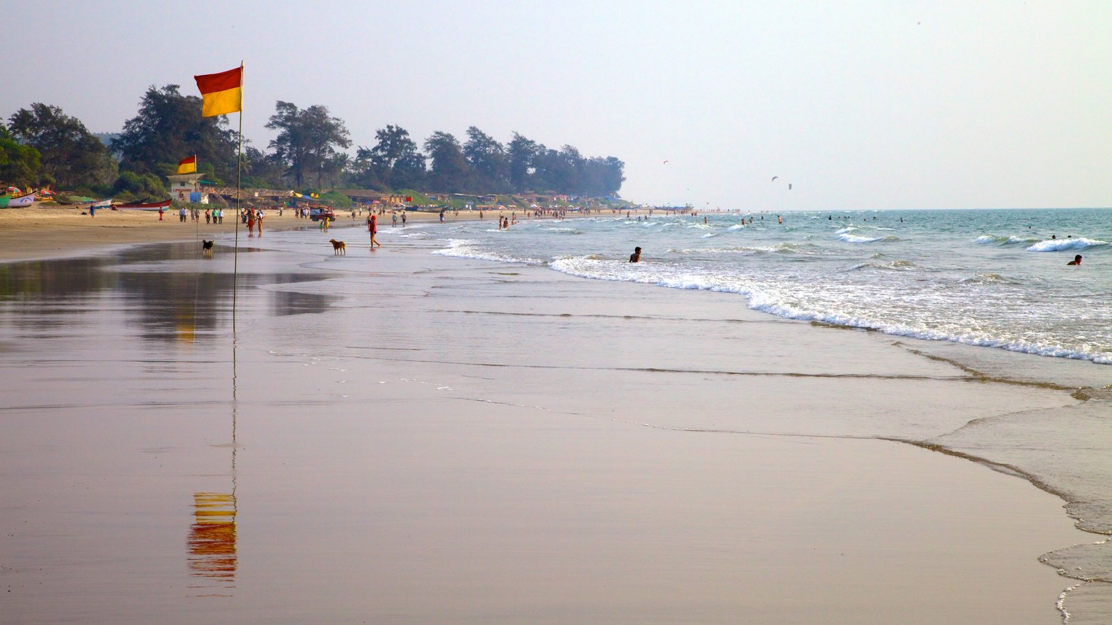 Goa featuring tropical scenes, landscape views and swimming