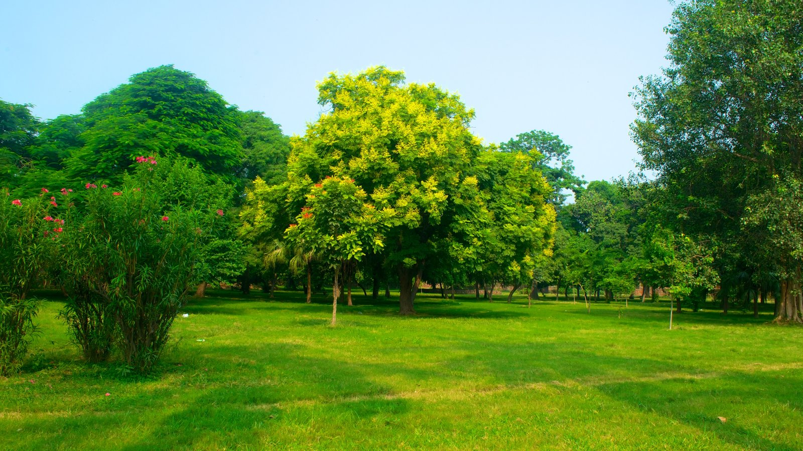 Fotos de parques y jardines ver im genes de tumba de humayun for Parques y jardines fotos