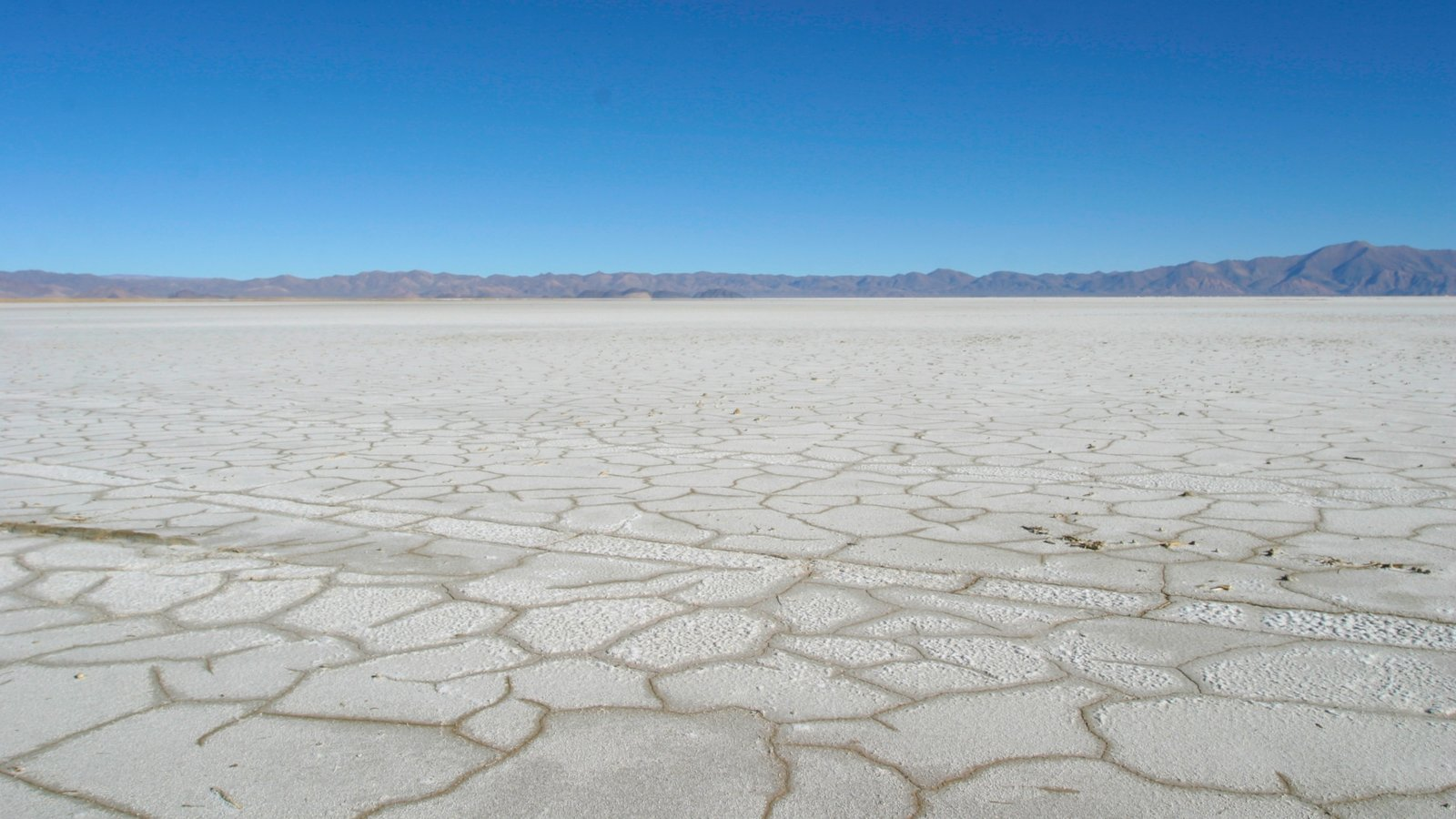 Argentina que inclui paisagens do deserto e paisagem