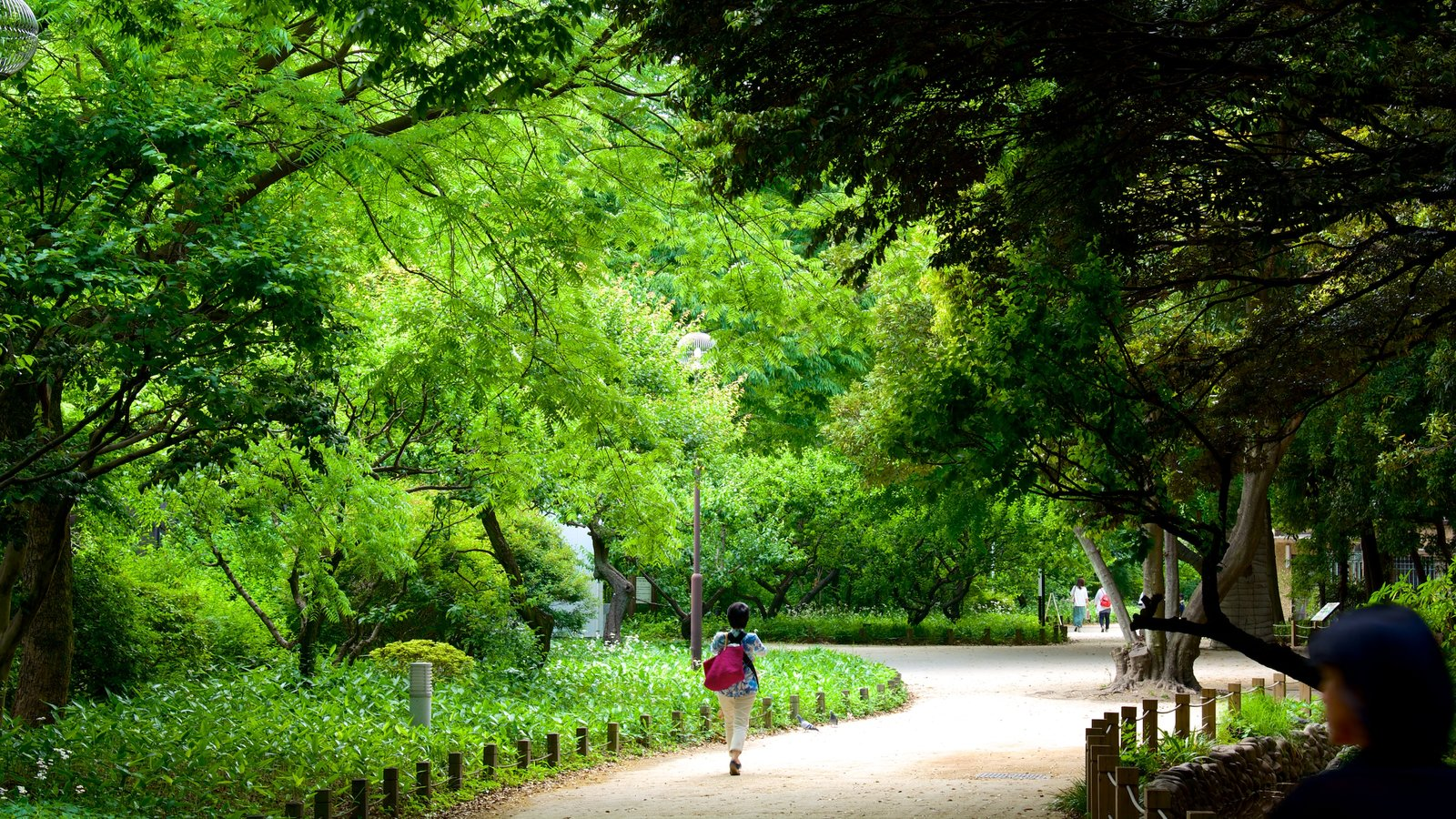 Gardens & Parks Pictures: View Images of Tokyo