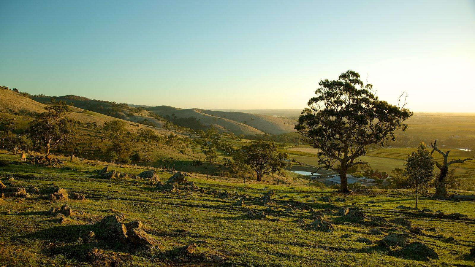 Landscape pictures view images of south australia for Adelaide hills landscape