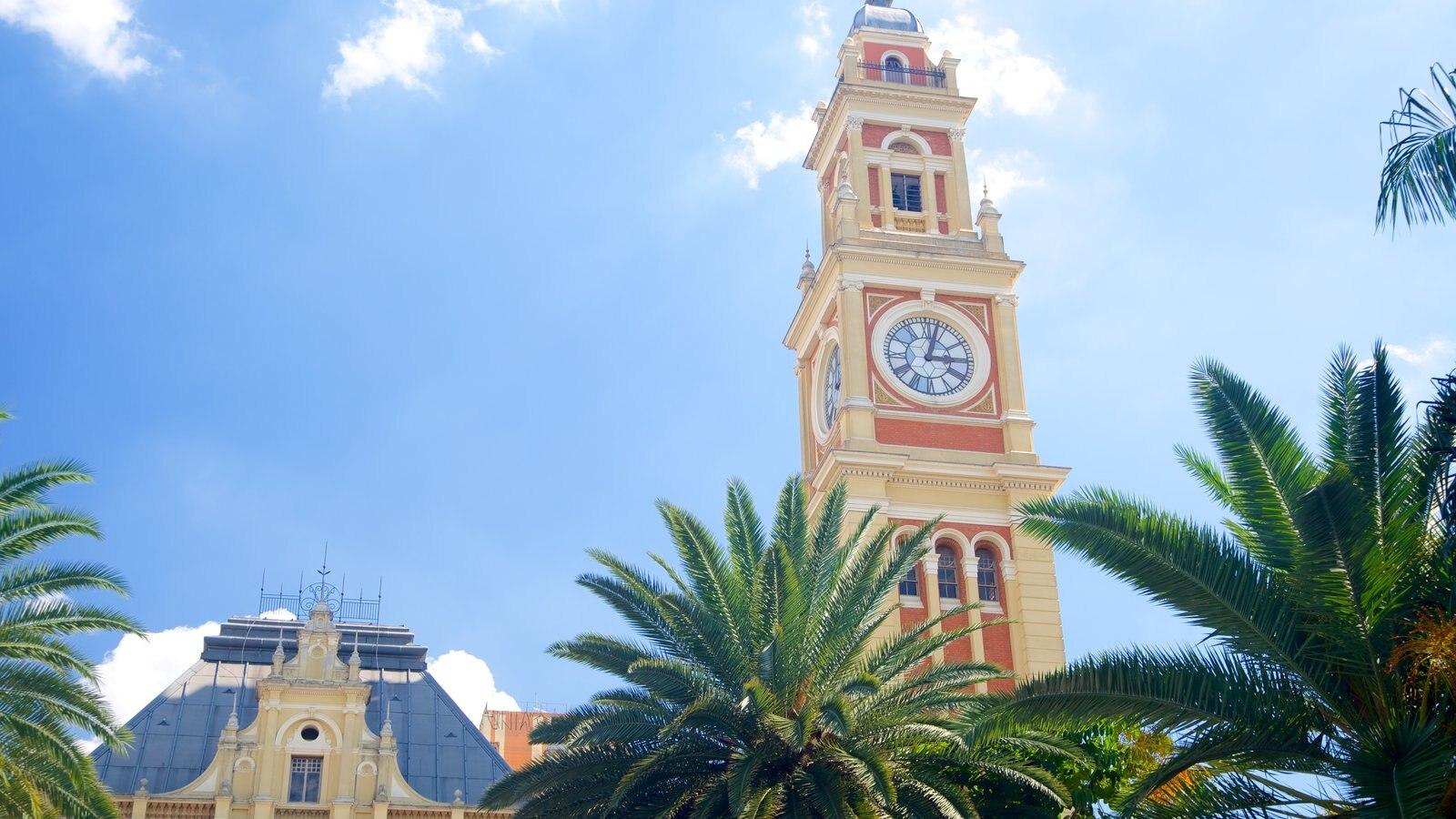 Itajaí que inclui uma cidade, uma igreja ou catedral e aspectos religiosos