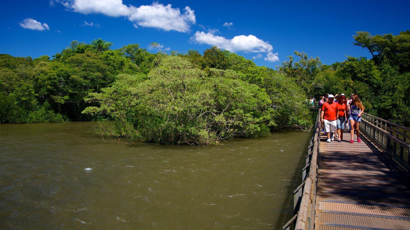 Garganta do Diabo que inclui um jardim, uma ponte e um rio ou córrego