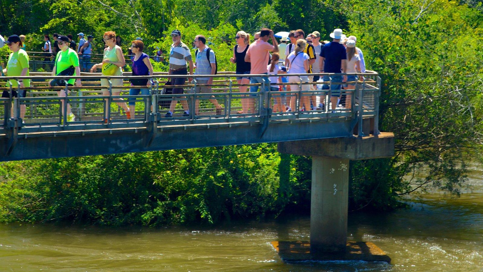 Garganta do Diabo que inclui uma ponte, um rio ou córrego e escalada ou caminhada