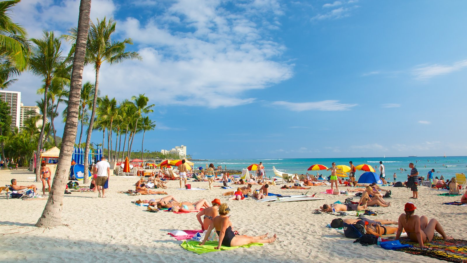 Oahu Island which includes a beach and tropical scenes as well as a large group of people