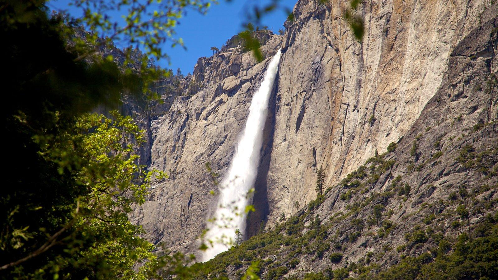 Parque Nacional Yosemite que incluye una catarata y montañas