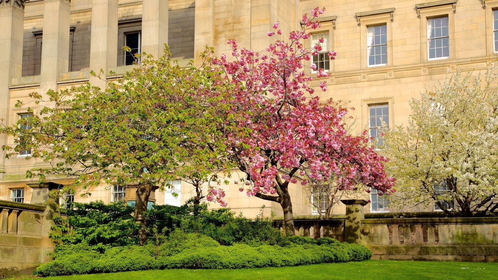 St. George\'s Hall ofreciendo un jardín y un edificio administrativo