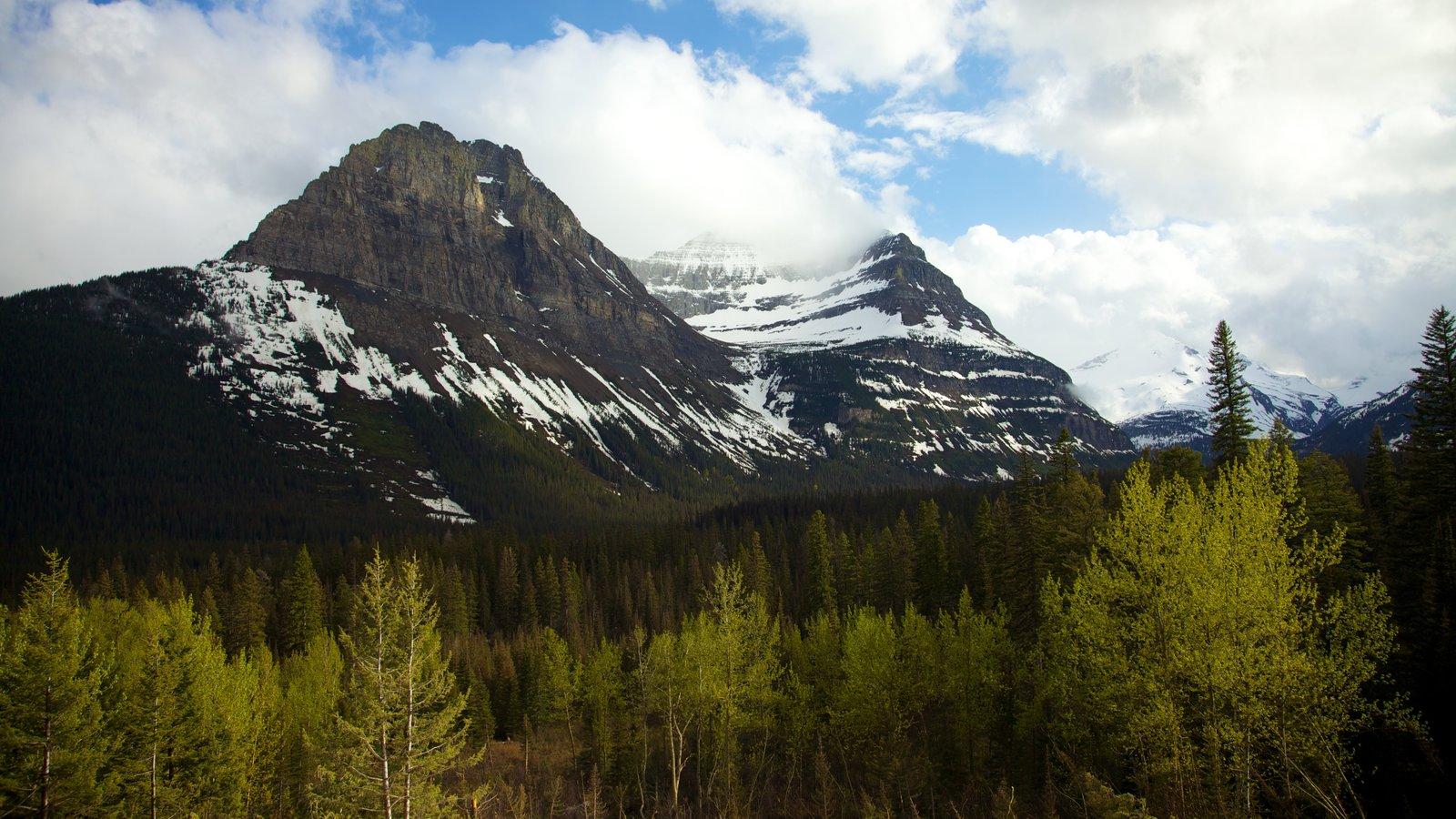 Parque Nacional de los Glaciares que incluye montañas